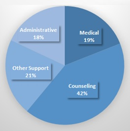 FIGURE 1, Pie Chart: Administrative (18%), Medical (19%), Counseling (42%), Other Support (21%).