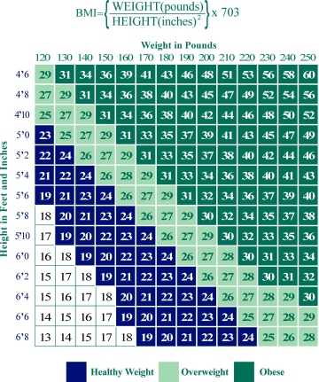 Figure 8: BMI Weight Chart