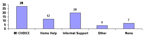 Bar Chart: MI CHOICE (28); Home Help (12); Informal Support (20); Other (4); None (7).