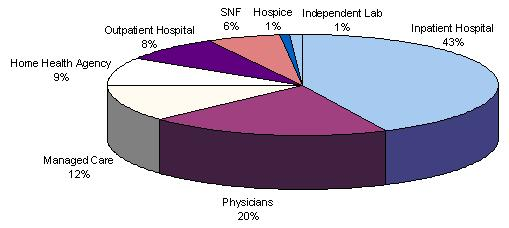 Pie Chart: Physicians (20%); Managed Care (12%); Home Health Agency (9%); Outpatient Hospital (8%); SNF (6%); Hospice (1%); Independent Lab (1%); and Inpatient Hospital (43%).