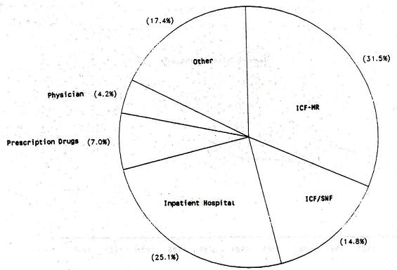 Pie Chart: Other (17.4%); ICF-MR (31.5%); ICF/SNF (14.8%); Inpatient Hospital (25.1%); Prescription Drugs (7%); Physician (4.2%).