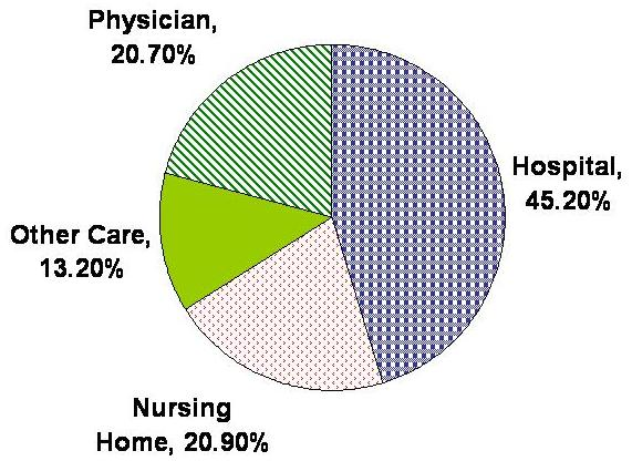 Pie Chart: Hospital 45.2%, Physician 20.7%, Nursing Home 20.9%, Other Care 13.2%