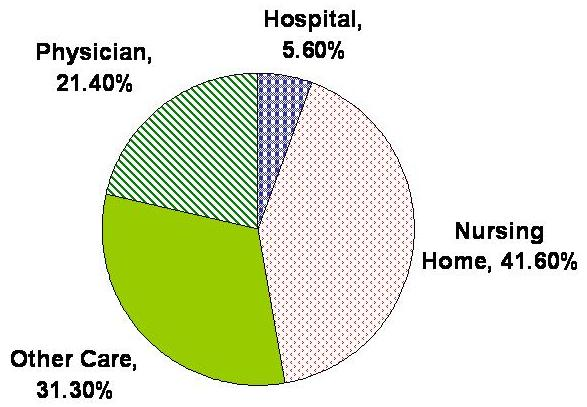 Pie Chart: Hospital 5.6%, Physician 21.4%, Nursing Home 41.6%, Other Care 31.3%