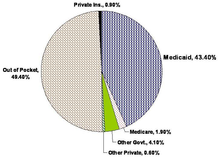Pie Chart: Out of Pocket 49.4%, Private Insurance 0.9%, Medicaid 43.4%, Medicare 1.9%, Other Government 4.1%, Other Private 0.6%