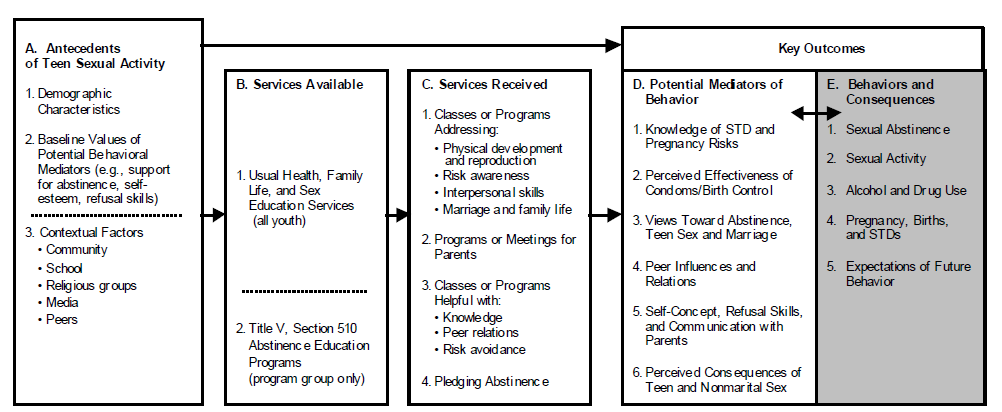 Figure VI.1. Logic Model for Evaluating the Impact of Title V, Section 510 Programs