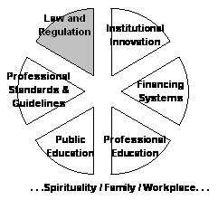 Equally sectioned pie chart: Shaded slice -- Law and Regulation; slice -- Institutional Innovation; slice -- Financing Systems; slice -- Professional Education; slice -- Public Education; slice -- Professional Standards and Guidelines. Below chart: ...Spi