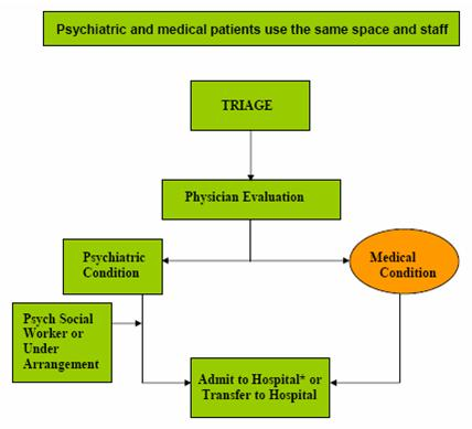 Organizational Chart: Psychiatric and Medical Patients Use the Same Space and Staff. Triage leads to Physician Evaluation, which leads to Psychiatric Condition (or Medical Condition, see below), which leads to Psych Social Worker or Under Arrangement, which leads to Admit to Hospital or Transfer to Hospital. Triage leads to Physician Evaluation, which leads to Medical Condition (or Psychiatric Condition, see above), which leads Admit to Hospital or Transfer to Hospital.