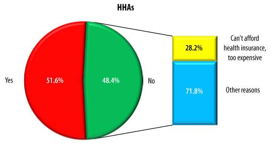 Pie Chart: HHAs -- Yes (51.6%), No (48.4%). WITHIN NO -- Can't afford health insurance, too expensive (28.2%), Other reasons (71.8%).