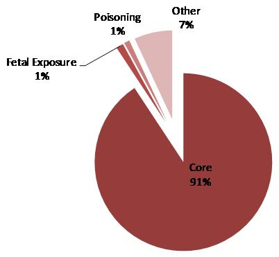This is a pie chart displaying the distribution of expenditures fully attributable to SA by type. The shares are:  core 90.8 percent, fetal exposure 6.9 percent, poisoning 1.3 percent and other 1.0 percent.