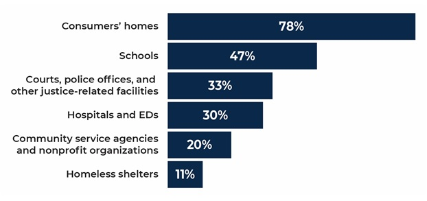FIGURE ES.2, Bar Chart: Consumers' homes 78%; Schools 47%; Courts, police offices, and other justice-related facilities 33%; Hospitals and EDs 30%; Community service agencies and non-profit organizations 20%; Homeless shelters 11%.