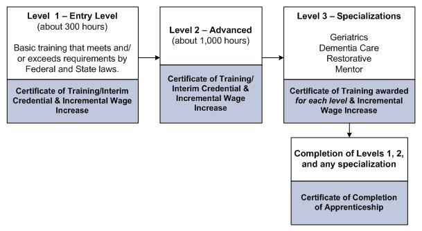 Level 1 - Entry Level (about 300 hours). Basic training that meets and/or exceeds requirements by federal and state laws. Certificate of Training/Interim Credential & Incremental Wage Increase. Level 2 - Advanced (about 1,000 hours). Certificate of Training/Interim Credential & Incremental Wage Increase. Level 3 - Specializations. Geriatrics, Dementia Care, Restorative, Mentor. Certificate of Training awarded for each level & Incremental Wage Increase. Completion of Levels 1, 2, and any specialization. Certificate of Completion of Apprenticeship.