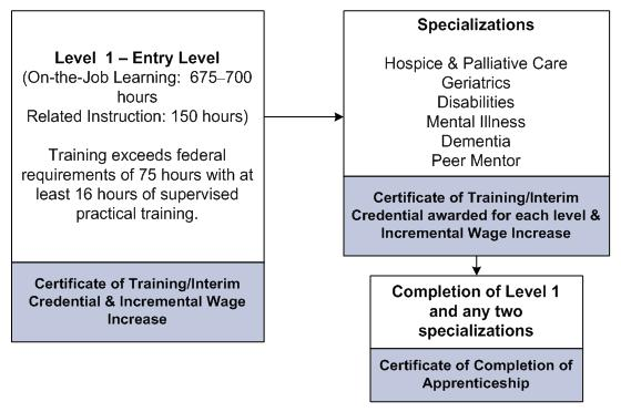 Level 1 - Entry Level (on-the-job learning: 675-700 hours; related instruction: 150 hours): Training exceeds federal requirements of 75 hours with at least 16 hours of supervised practical training. Certificate of Training/Interim Credential & Incremental Wage Increase. Specializations: Hospice & Palliative Care; Geriatrics; Disabilities; Mental Illness; Dementia; Peer Mentor. Certificate of Training/Interim Credential awarded for each level & Incremental Wage Increase. Completion of Level 1 and any two specialiations leads to Certificate of Completion of Apprenticeship.