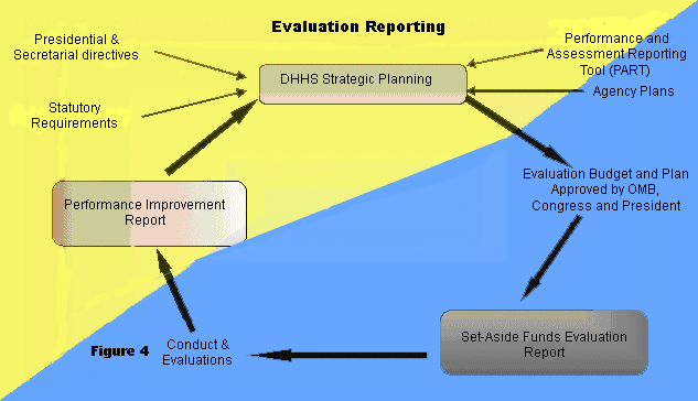 Evaluation Reporting