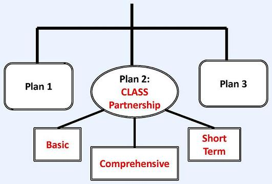 Flow Chart: CLASS Independence Benefit Plan leads to Plan 1, Plan 2: CLASS Partnership, and Plan 3. Plan 2 leads to Basic, Comprehensive and Short Term.