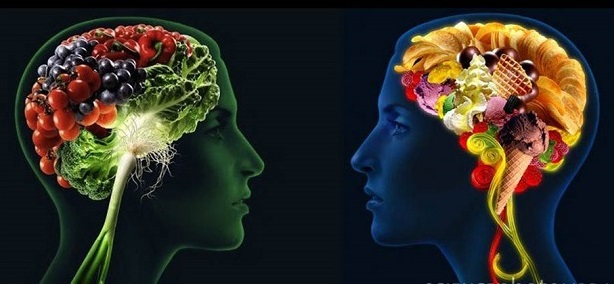 Photo of two heads. One brain made of fruits and vegetables; one brain made of snack food.