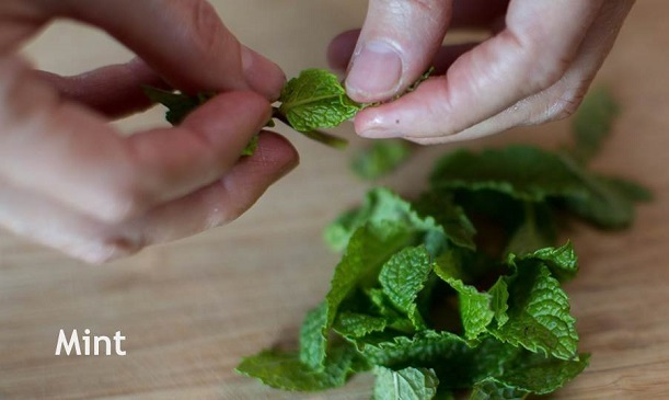 Photo of mint leaves.