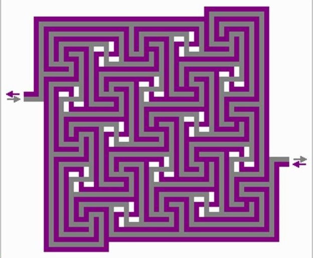 A picture of a maze.
