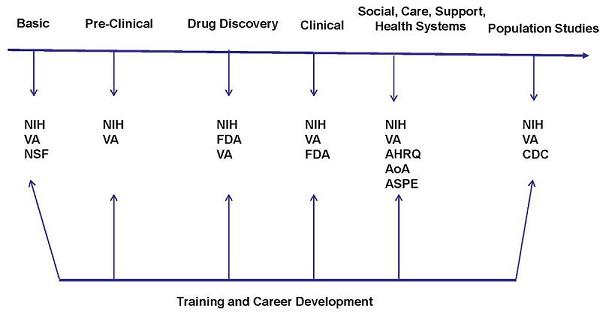 Flow Chart: Basic leads to NIH, VA, NSF; Pre-Clinical leads to NIH, VA; Drug Discovery leads to NIH, FDA, VA; Clinical leads to NIH, VA, FDA; Social, Care, Support, Health Systems leads to NIH, VA, AHRQ, AoA, ASPE; Population Studies leads to NIH, V, CDC. Training and Career Develop leads to each group (Basic; Pre-Clinical; Drug Discovery; Clinical; Social, Care, Support, Health Systems; Population Studies).