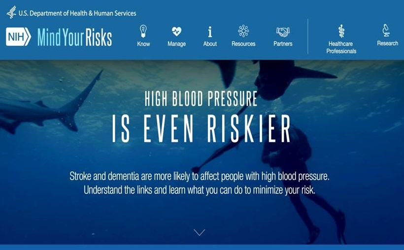 Mind Your Risks Home Page screen shot.