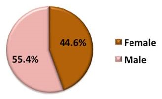 Pie Chart: Female (44.6%), Male (55.4%).