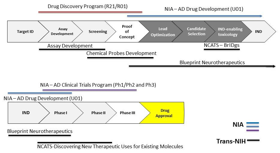 Advisory council february 2017 meeting presentation transforming leveraging trans nih translational programs malvernweather Choice Image