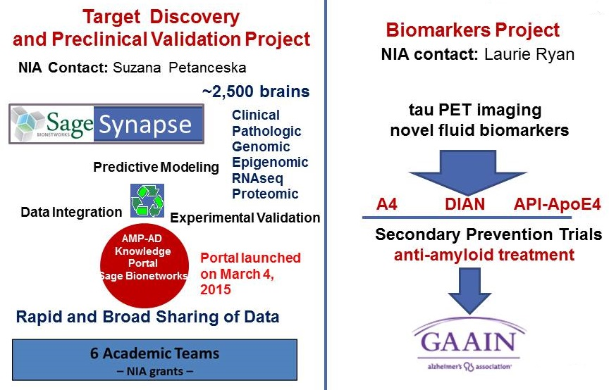 Complicated diagram discussing the Target Discovery and Preclinical Validation Project, and the Biomarkers Project. Listen to session video for explanation.