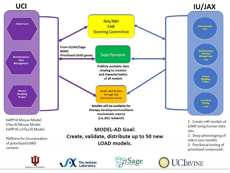Complicated diagram discussing UCI and IU/JAX. Listen to session video for explanation.