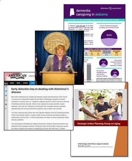 Screen shot of Alzheimer's Association Public Health pages.