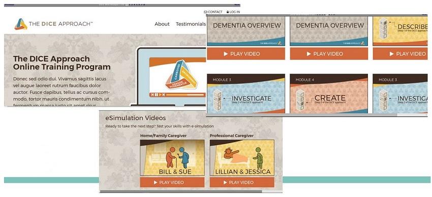 DICE Website screen shots.
