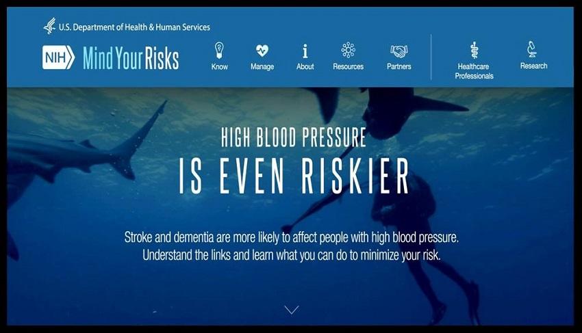 Mind Your Risks website screen shot.