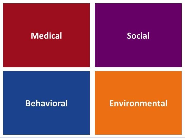 Four squares: Medical, Social, Behavioral, Environmental