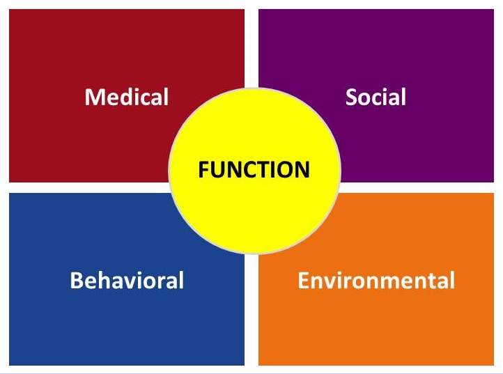 Four squares: Medical, Social, Behavioral, Environmental. A circle covers the joining corners: Function.