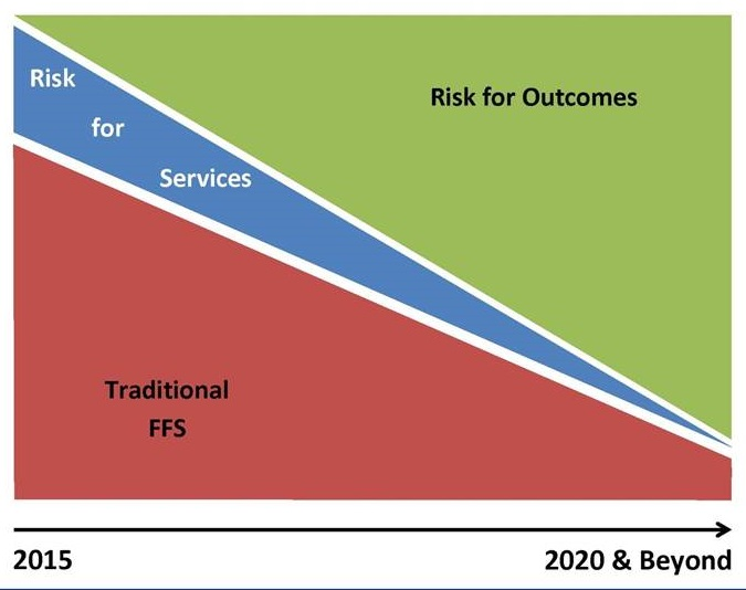 Area chart showing Risk for Outcomes, Risk for Services, Traditional FFS.