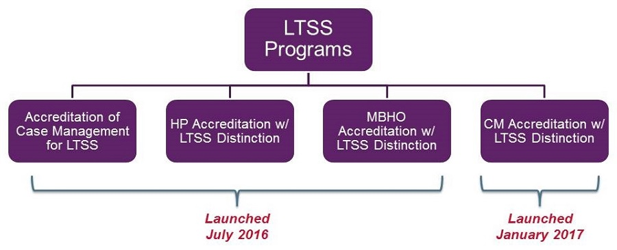 Organization Chart: Top--LTSS Programs; Second--(1)Accreditation of Case Management for LTSS, (2)HP Accreditation w/ LTSS Distinction, (3)MBHO Accreditation w/ LTSS Distinction, (4)CM Accreditation w/ LTSS Distinction. #1,2,3 were launched July 2016; #4 was launched January 2017.