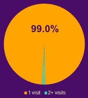 Pie Chart: 1 visit (99.0%)
