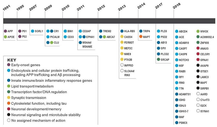 Diagram of genetic discoveries by year.