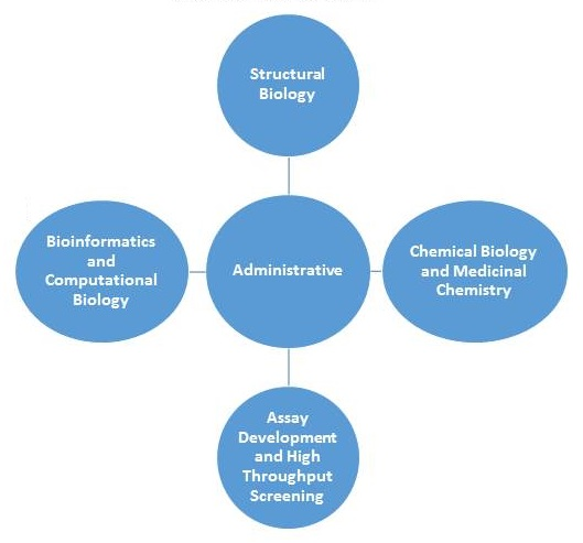 Center structure diagram: center=Administrative; left=Bioinformatics and Computational Biology; top=Structural Biology; right=Chemical Biology and Medicinal Chemistry; bottom=Assay Development and High Throughput Screening.