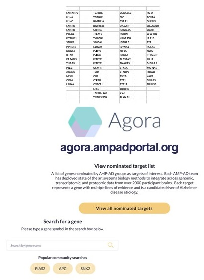 Agora Candidate Targets.
