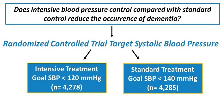 Illustration breaking down the question: Does intensive blood pressure control compared with standard control reduce the occurrence of dementia?