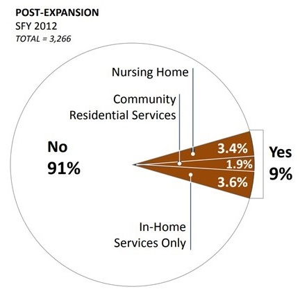 PIE CHART: No 91%, Yes 9% (Nursing Home 3.4%, Community Residential Services 1.9%, In-Home Services Only 3.6%).
