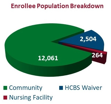 PIE CHART, Enrollee Population Breakdown: Community 12,061, HCBS Waiver 2,504, Nursing Facility 264.