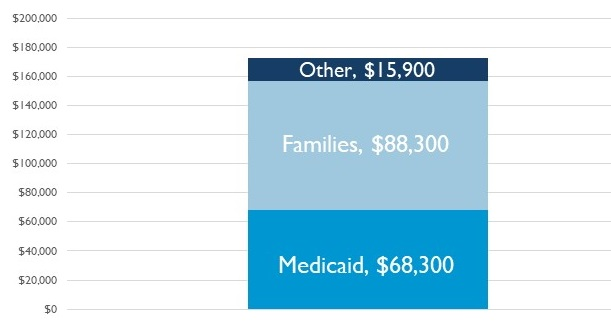 Stacked Bar Chart: Other $15,900, Families $88,300, Medicaid $68,300.