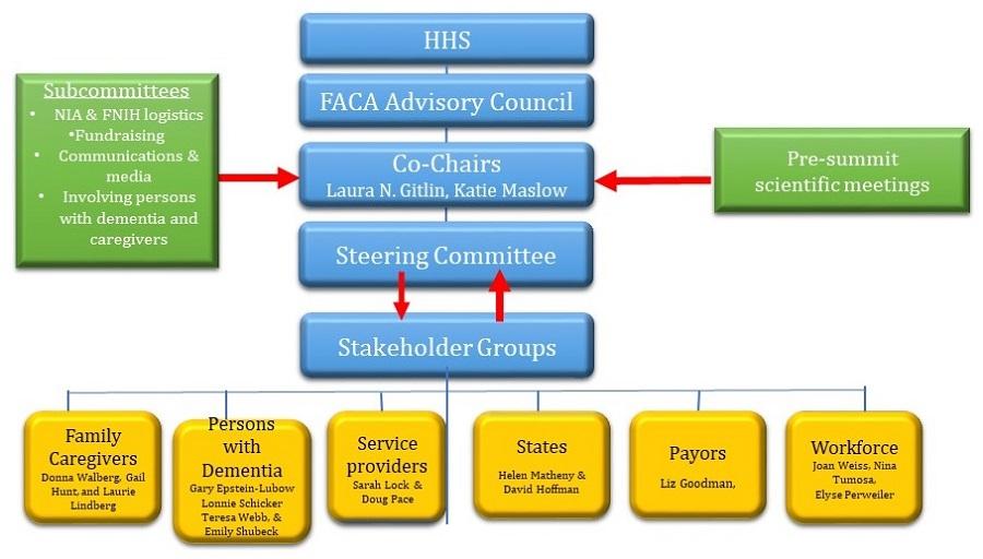 Organizational structure of 2017 summit.
