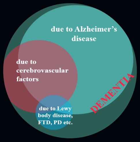 Circle Diagram: Larger cirlce represents Dementia and includes: a slightly smaller circle Due to Alzheimer's Disease; a even smaller circle Due to Cerebrovascular Factors; the smallest circle Due to Lewy body disease, FTD, PD etc.