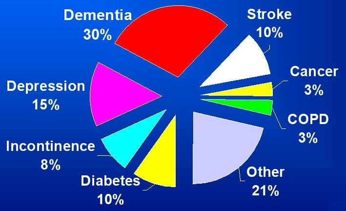 Pie Chart: Dementia 30%, Stroke 10%, Cancer 3%, COPE 3%, Other 21%, Diabetes 10%, Incontinence 8%, Depression 15%.