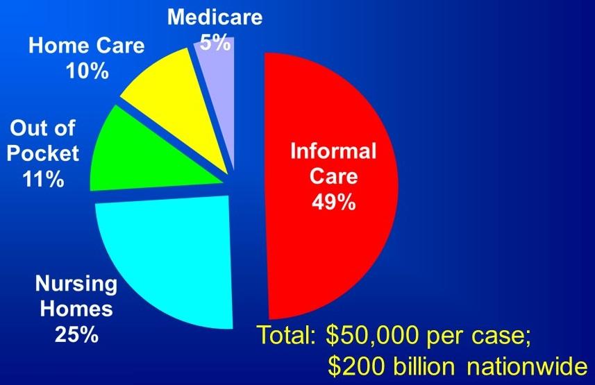 Medicare 5%, Informal Care 49%, Nursing Homes 25%, Out of Pocket 11%, Home Care 10%.