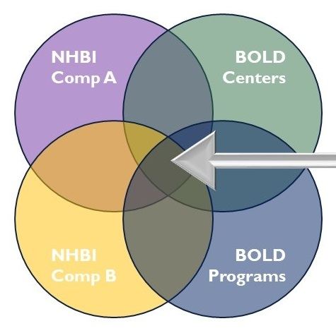 Overlapping circles; top left circle NHBI Component A, top right circle BOLD Centers, bottom left circle NHBI Component B, bottom right circle BOLD Programs.