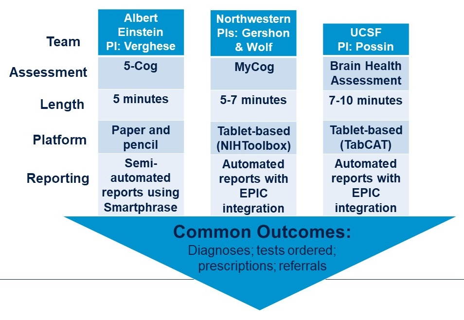 Graphic showing the differences/similarities of 3 programs according to Team, Assessment, Length, Platform, Reporting.