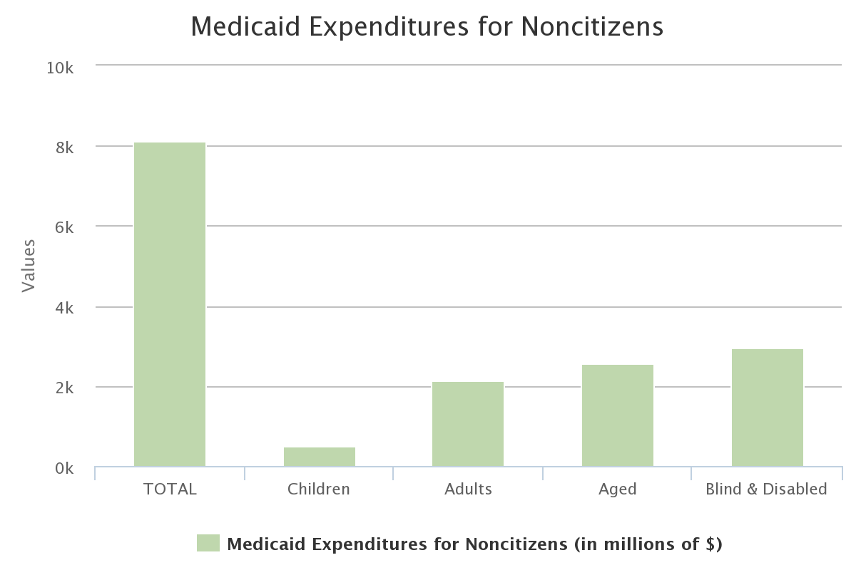 Medicaid Expenditures for Noncitizens